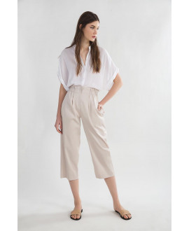 The Beige Elegant Pants
